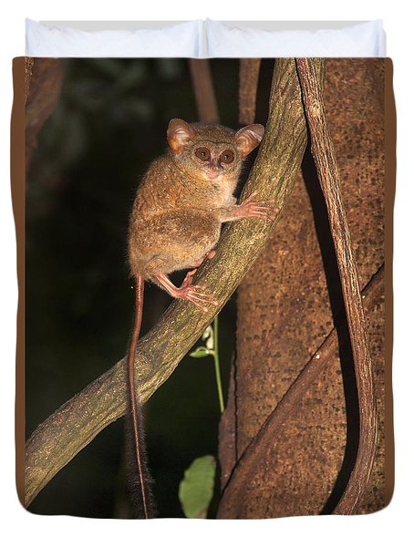 Duvet Cover featuring the photograph Tarsius Tarsier  by Sergey Lukashin