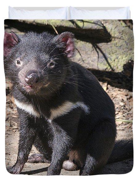 Tasmanian Devil Duvet Cover by Steven Ralser
