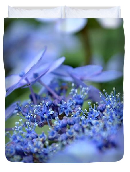 Taube Lacecap Hydrangea Duvet Cover by Scott Lyons
