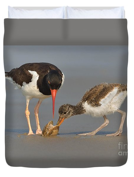 Duvet Cover featuring the photograph Teaching The Young by Jerry Fornarotto