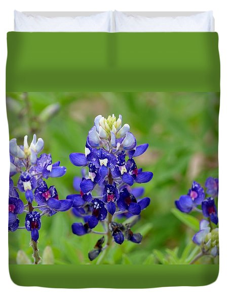 Texas Bluebonnets Duvet Cover by Debra Martz