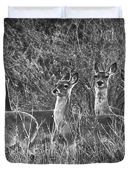 Texas Deer Duvet Cover
