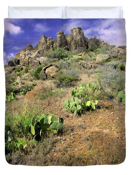 Texas Desert Duvet Cover