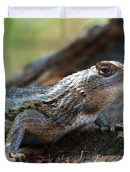 Texas Lizard Duvet Cover