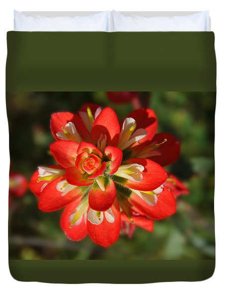 Texas Paintbrush Duvet Cover