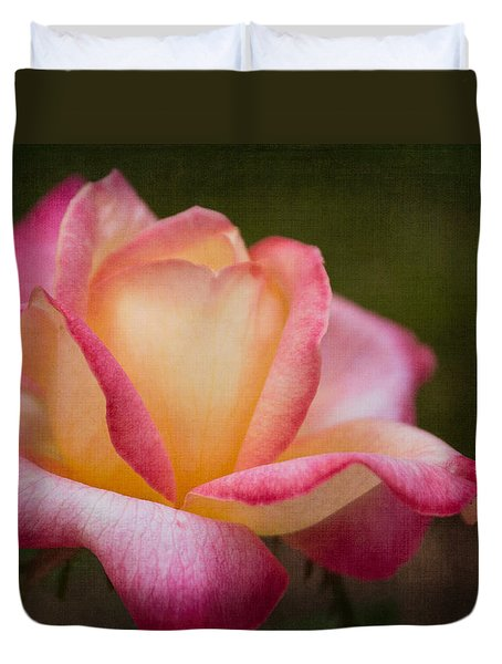 Textured Star Duvet Cover by Arlene Carmel