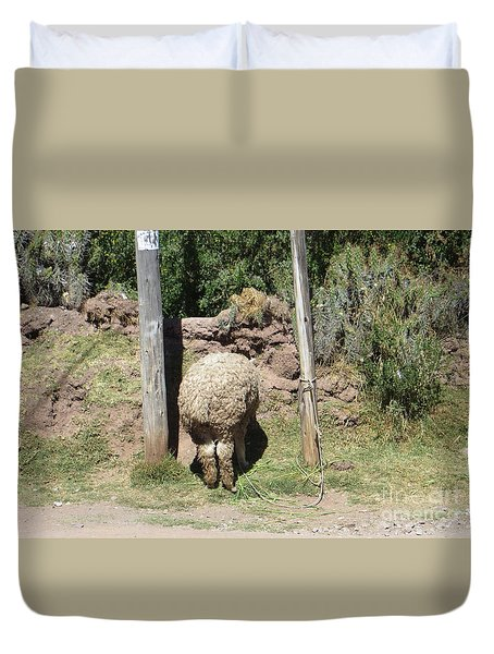 The Bashful Llama Duvet Cover