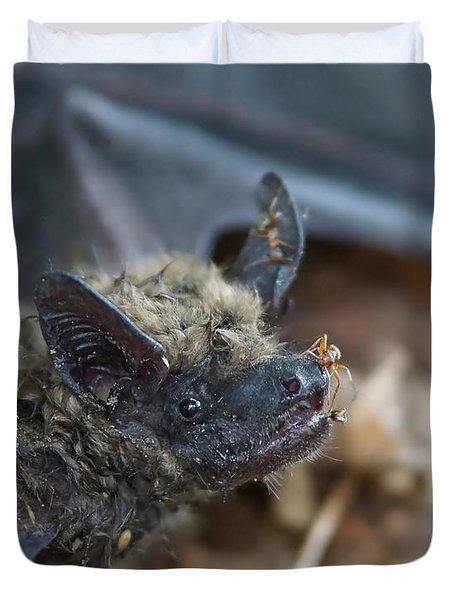 The Bat Duvet Cover by Ernie Echols