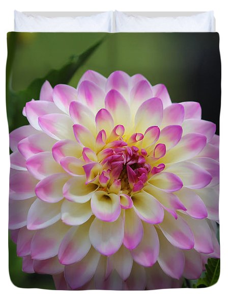 The Beautiful Dahlia Duvet Cover by Jeanette C Landstrom
