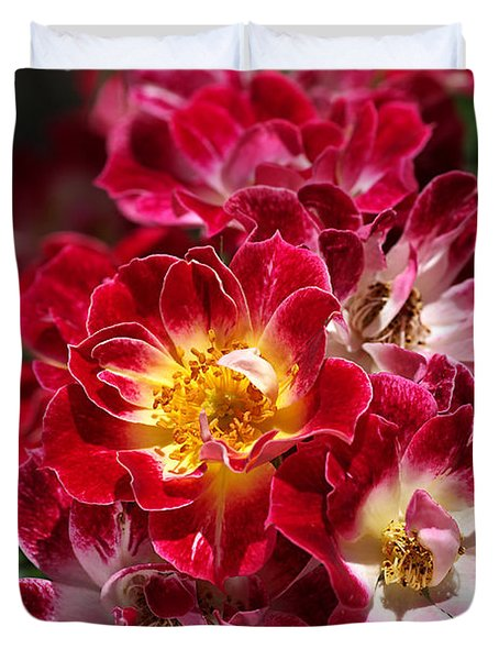 The Beauty Of Carpet Roses  Duvet Cover