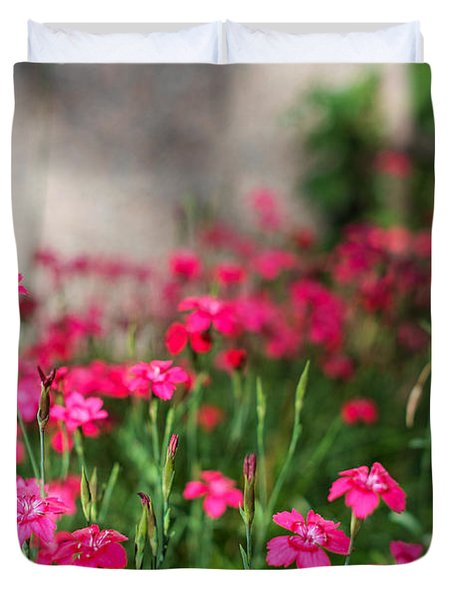 The Beauty Of Maiden Pinks Duvet Cover