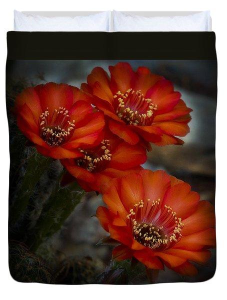 The Beauty Of Red Duvet Cover by Saija  Lehtonen