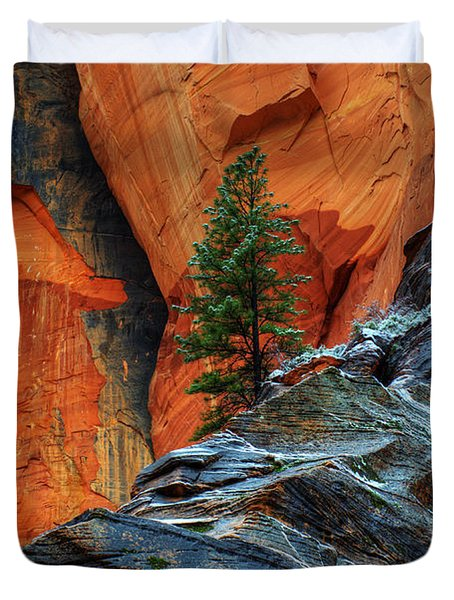 The Beauty Of Sandstone Zion Duvet Cover