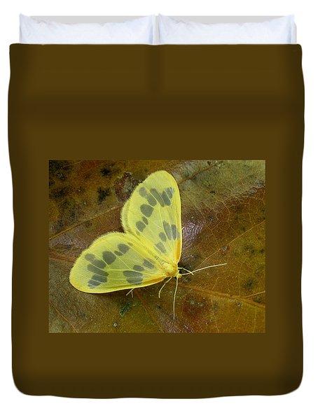 The Beggar Moth Duvet Cover