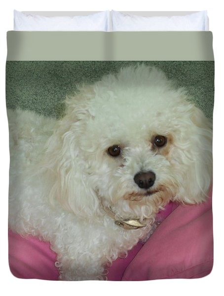 Bichon Frise Duvet Covers (Page #3 of 5) | Fine Art America