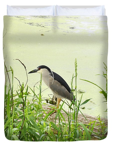 The Black-crowned Night Heron Duvet Cover