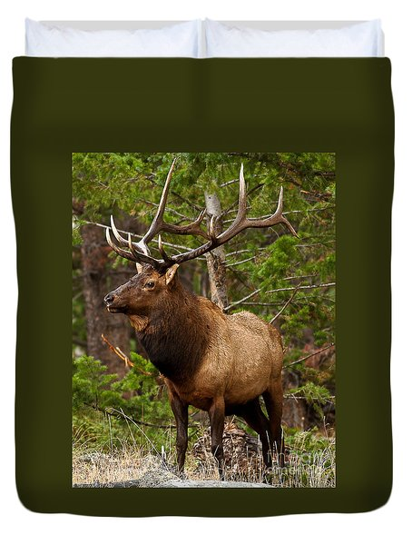 Duvet Cover featuring the photograph The Bull Elk by Steven Reed