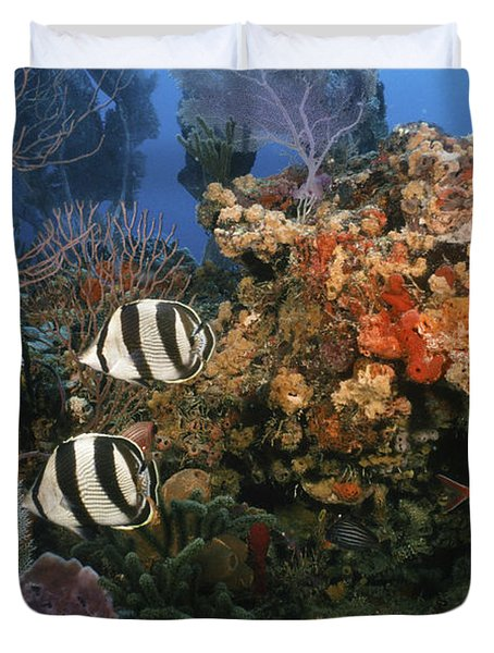 The Butterflyfish On Reef Duvet Cover