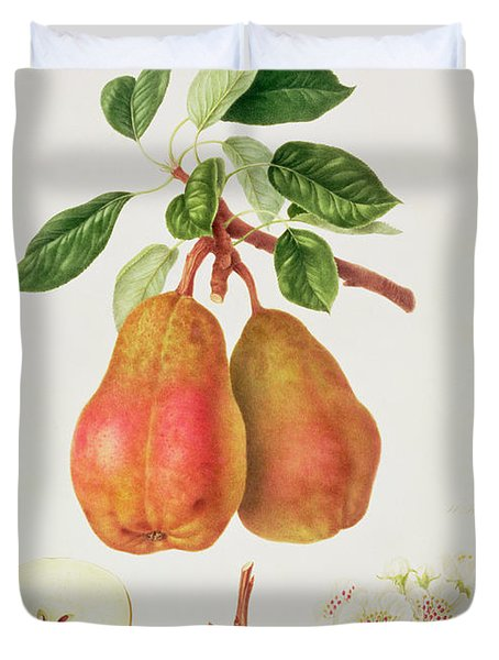 The Chaumontelle Pear Duvet Cover by William Hooker