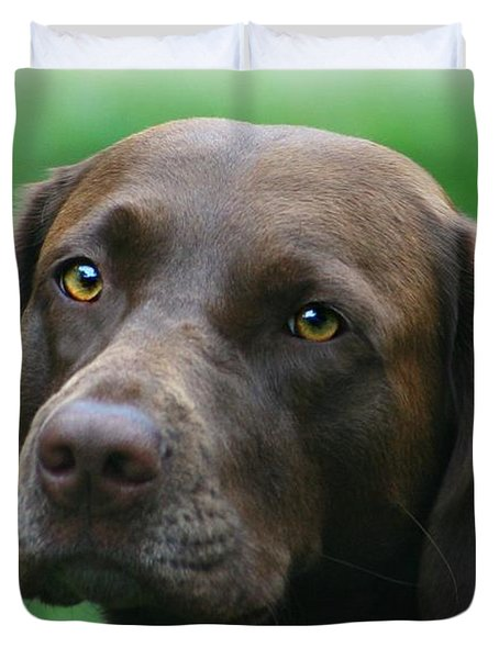The Chocolate Lab Duvet Cover by Barbara S Nickerson