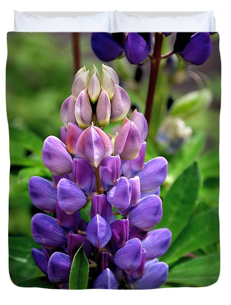 The Colors Of Lupine Duvet Cover