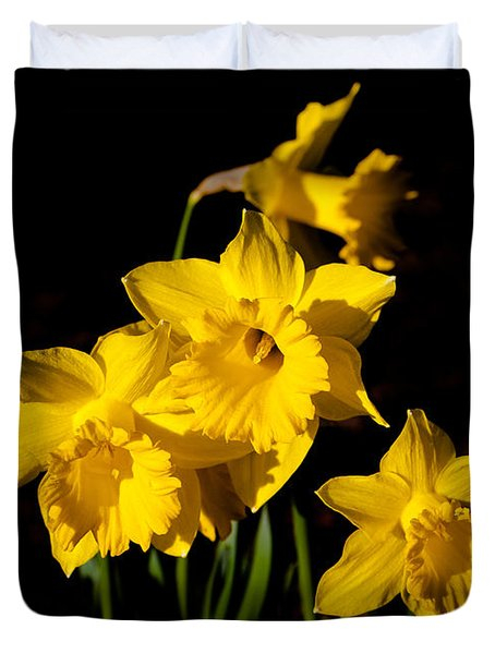 The Daffodils Duvet Cover by David Patterson