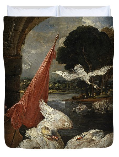 The Descent Of The Swan, Illustration Duvet Cover by James Ward