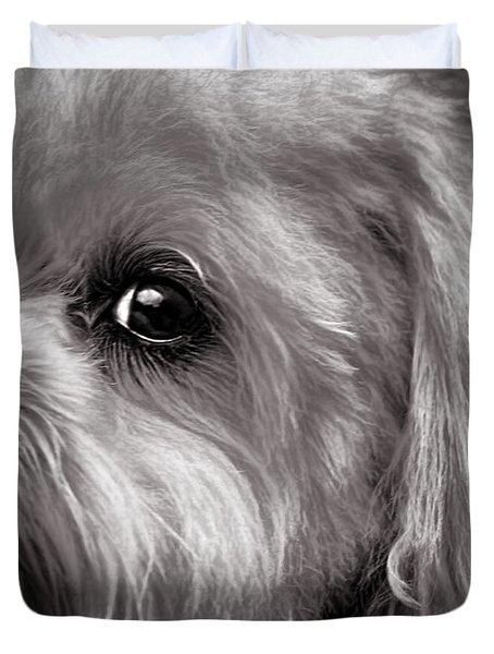 The Dog Next Door Duvet Cover by Bob Orsillo