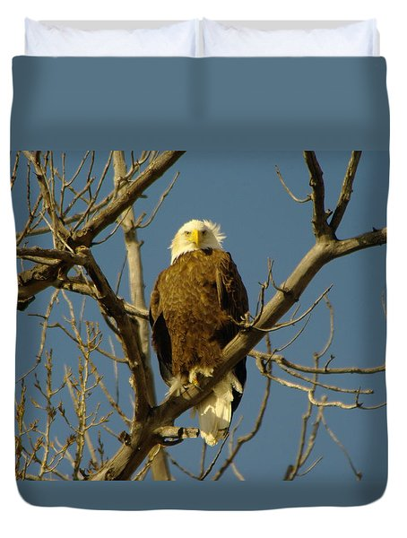 The Eagle Looks Down Duvet Cover by Jeff Swan