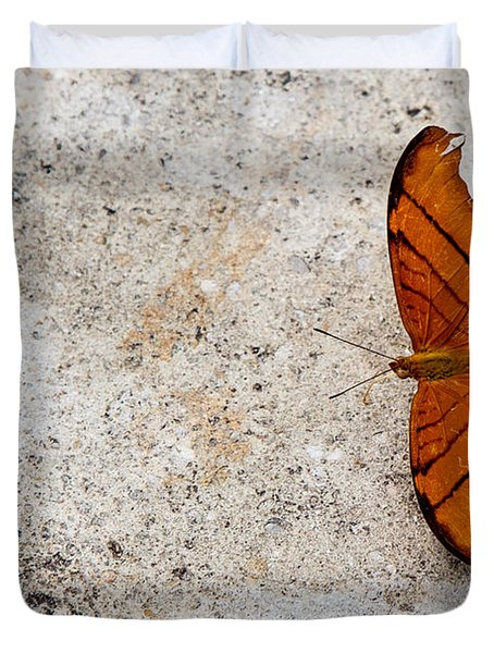 The Elusive Butterfly  Duvet Cover by Rene Triay Photography