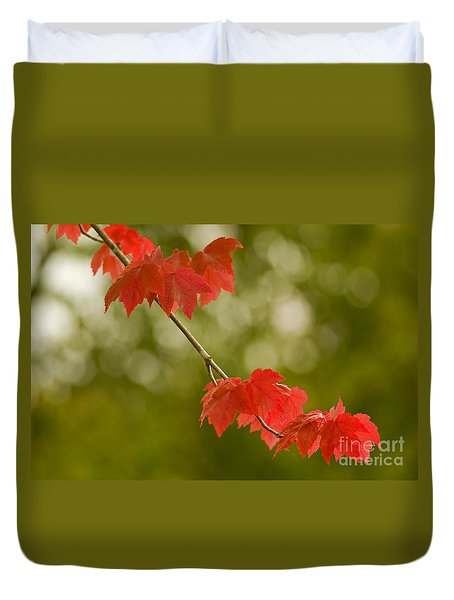 The Essence Of Autumn Duvet Cover by Nick  Boren