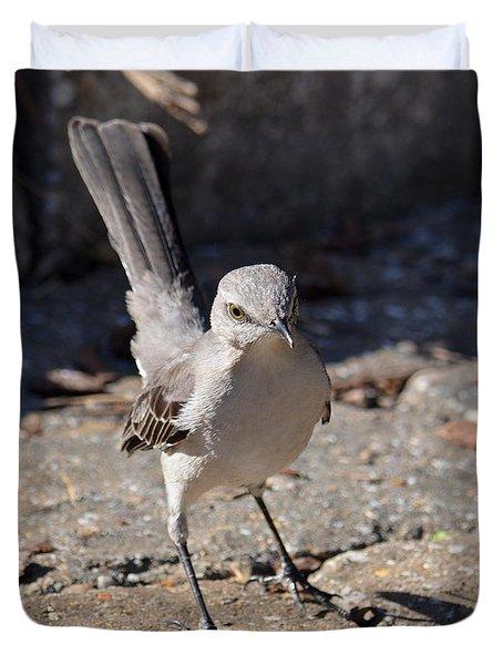 The Fiesty Catbird Duvet Cover by Maria Urso