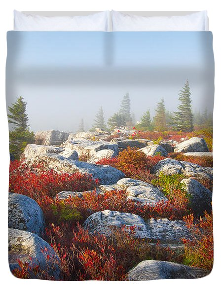 The Fog Clears At Dolly Sods Duvet Cover by Bill Swindaman