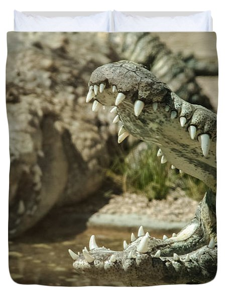 Duvet Cover featuring the photograph The Fool Crocodile by Stwayne Keubrick