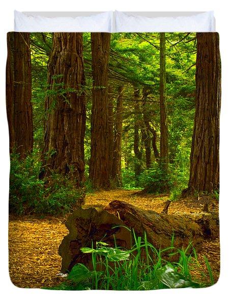 The Forest Of Golden Gate Park Duvet Cover