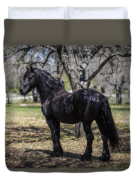 The Friesian Stallion Eros Duvet Cover