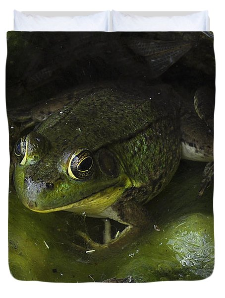The Frog Duvet Cover