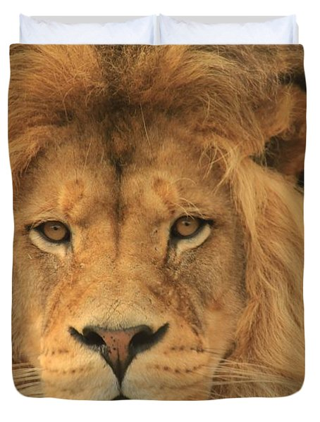 The Glory Of A King Duvet Cover by Laddie Halupa