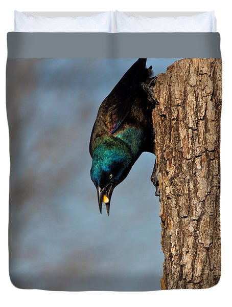 The Grackle Duvet Cover by Mark Alder