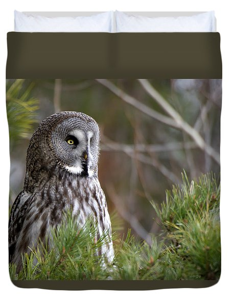 The Great Grey Owl Duvet Cover by Torbjorn Swenelius