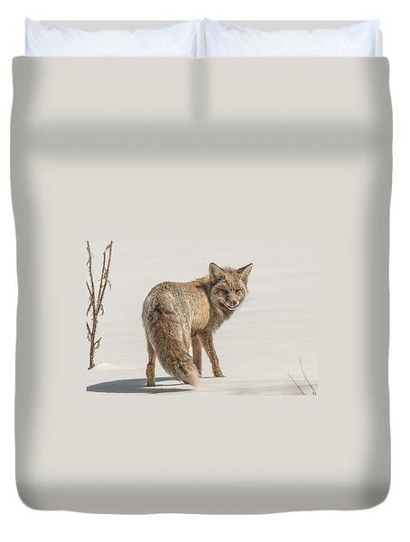 The Hungry Fox Duvet Cover by Yeates Photography