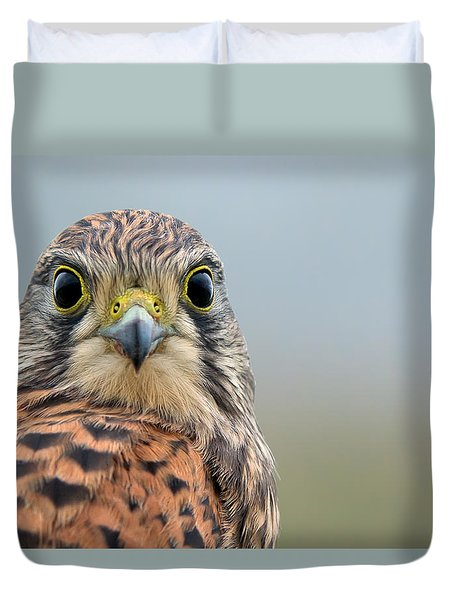 The Kestrel Face To Face Duvet Cover by Torbjorn Swenelius