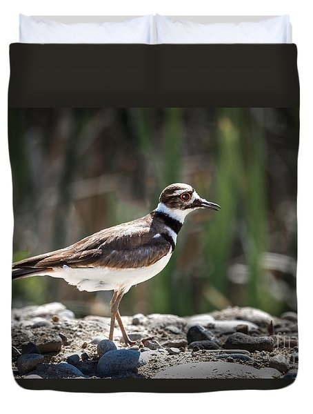 The Killdeer Duvet Cover