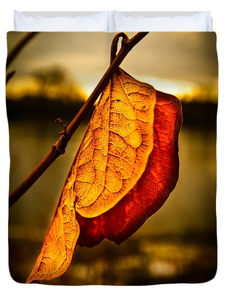 The Leaf Across The River Duvet Cover by Bob Orsillo