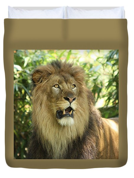 The Lion King Duvet Cover by Kim Hojnacki