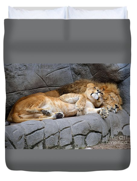 The Lion Sleeps Tonight Duvet Cover by Eva Kaufman