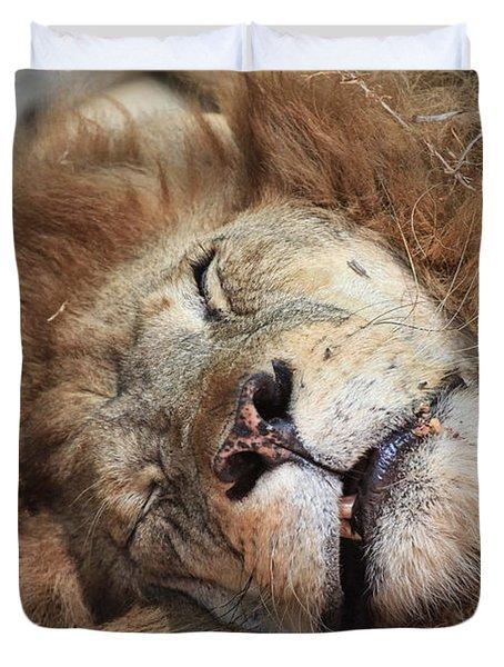 The Lion Sleeps Tonight V4 Duvet Cover by Douglas Barnard