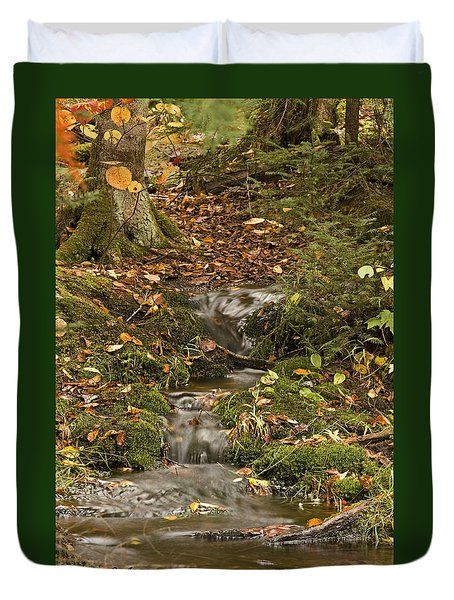 The Little Brook That Could Duvet Cover