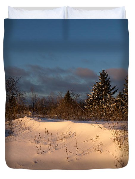 The Morning After The Snowstorm Duvet Cover by Georgia Mizuleva