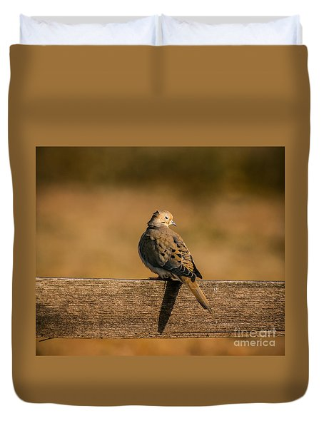 The Morning Dove Duvet Cover